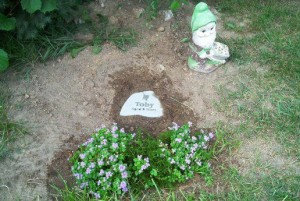 Toby's Burial in the backyard